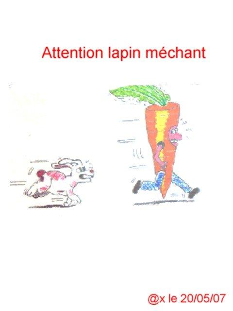 lapinmchant.jpg